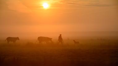 vroege ochtend landschapsfotografie