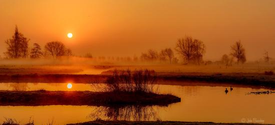zon landschapsfotografie