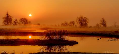 Oranje in Reeuwijk