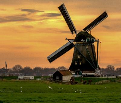 Windmills – Molens