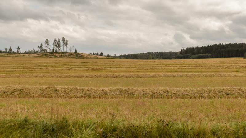 Landbouw velden