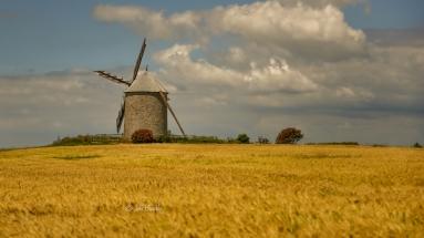 Franse windmolen