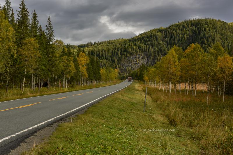 Weg in Noorwegen
