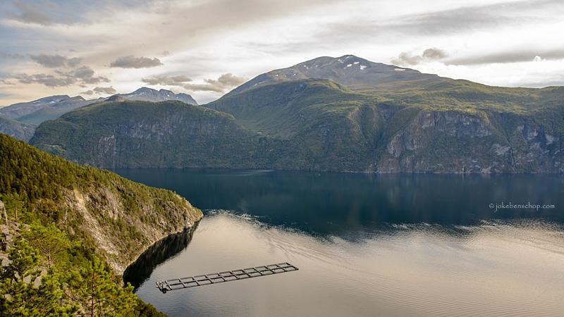Zalm kwekerij in het fjord
