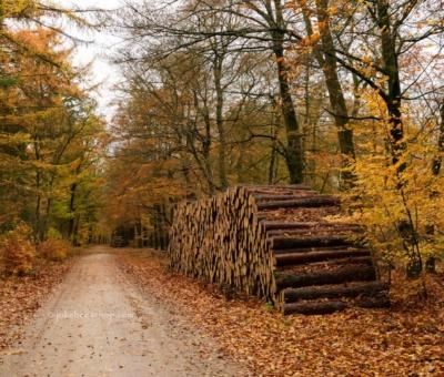 Landscape – Landschapsfotografie