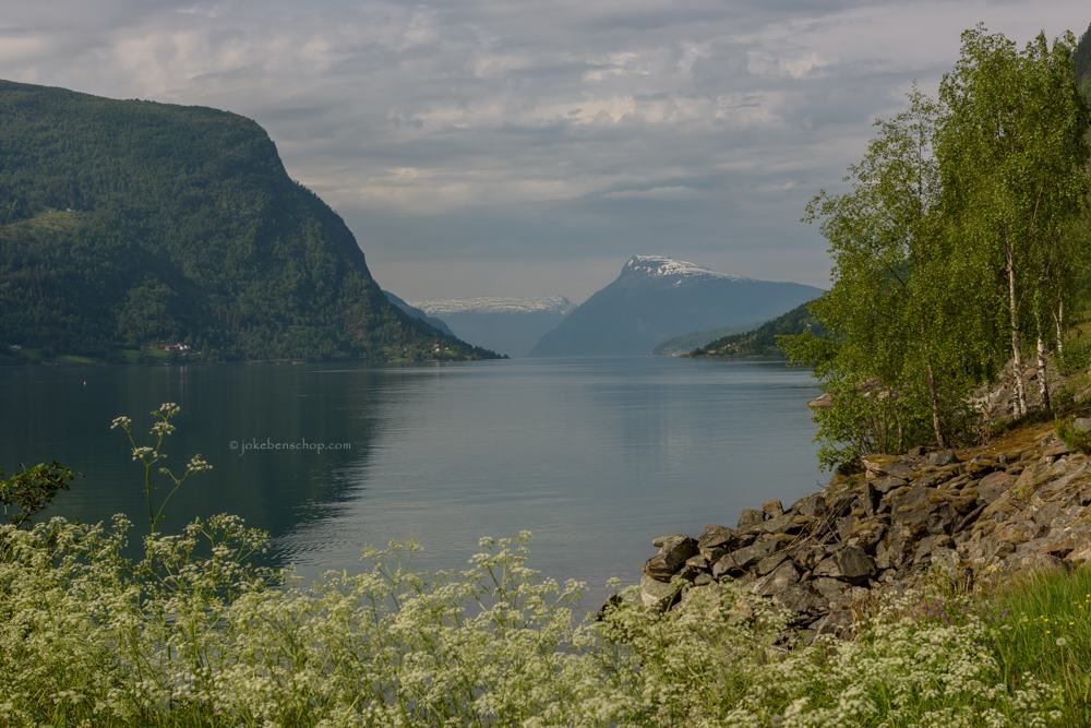Nieuwe dag met nieuwe fjorden