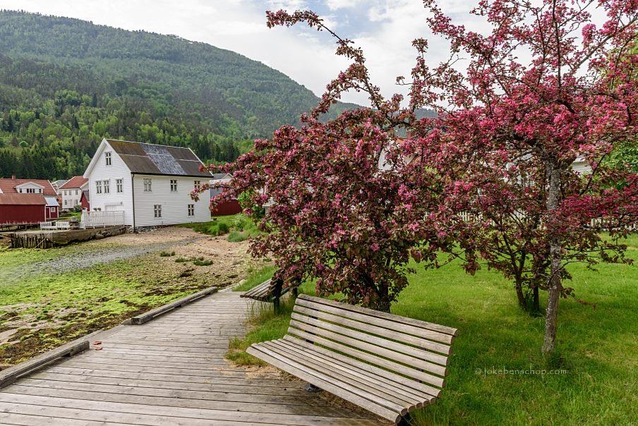Aan het fjord in de buurt van Lærdalsøyri Norway