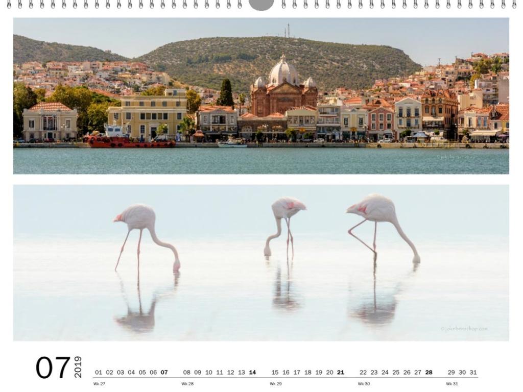 Mytilini, Flamingo's in de baai van Kallonis