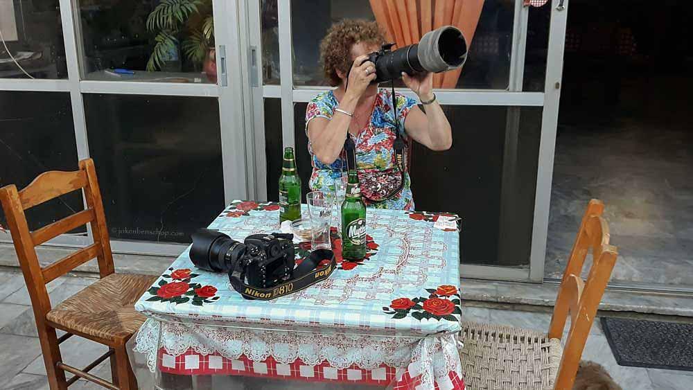 Vanaf een tafeltje op het terras uilen fotograferen